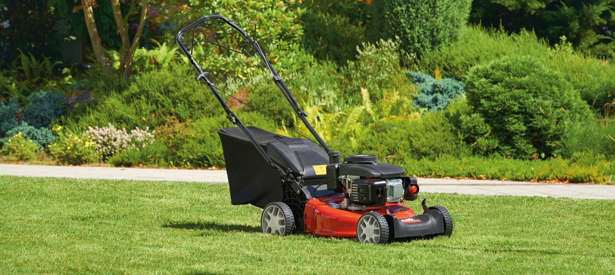 Best gas lawn mowers in 2020 (Self propelled & Comparison Tool)