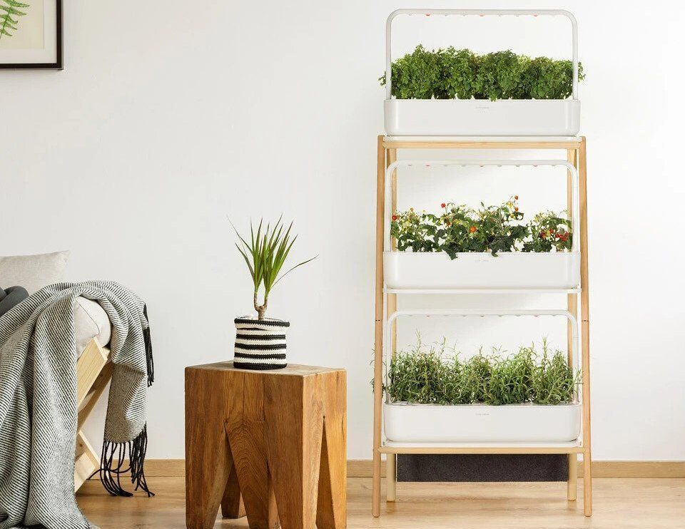 Click And Grow Smart Garden 27 Review