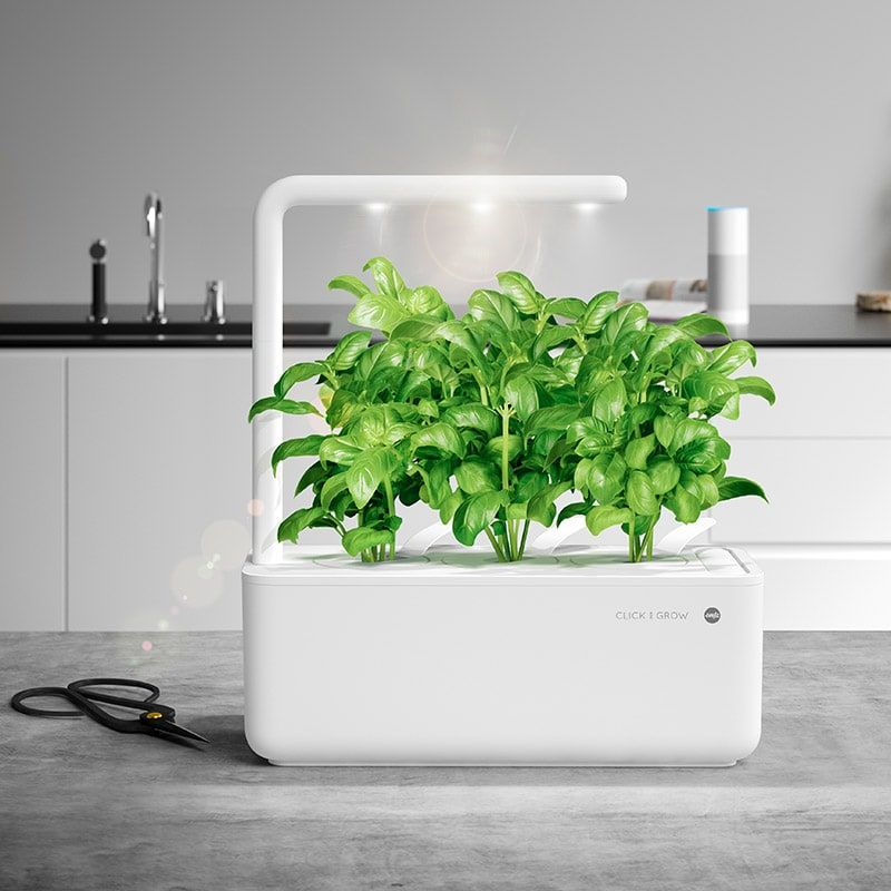 Best indoor herb garden wirecutter